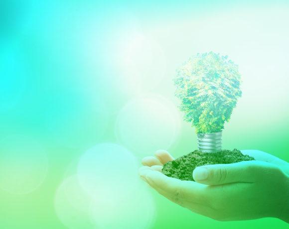 »Zapiranje snovnih in energetskih tokov biomase: ovrednotenje scenarijev in soustvarjanje podpornih ukrepov za razvoj biogospodarstva v obdobju 2021-2027«