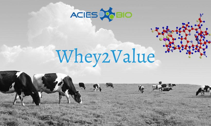 Whey2Value – Tehnologija za proizvodnjo vitamina B12 iz sirotke