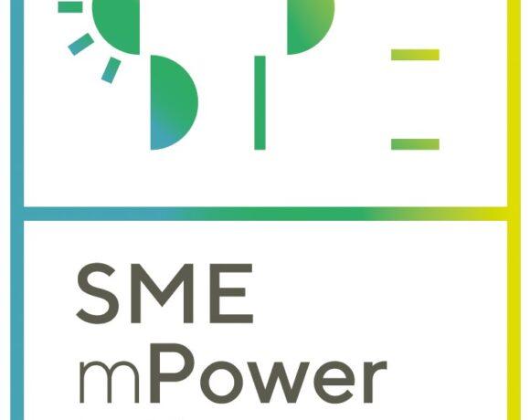 Brezplačni program usposabljanja 'Energetska učinkovitost v malih in srednje velikih podjetjih' v okviru EU projekta SMEmPOWER EFFICIENCY